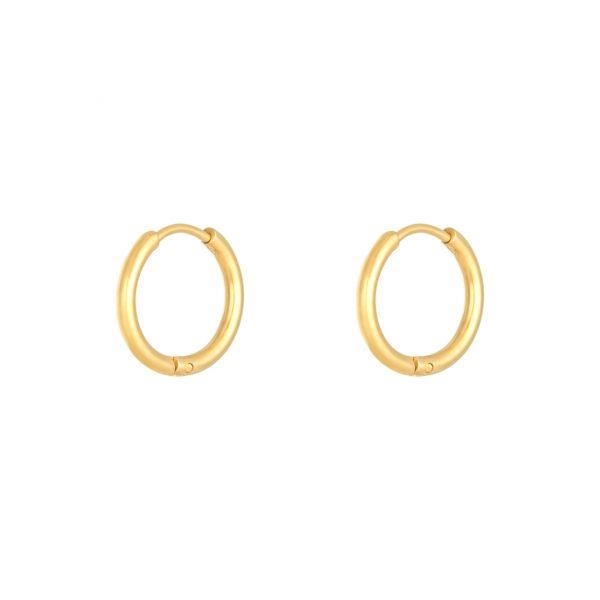 Chunky Hoops Gold Optik 1,6cm Alles Interior Boho Scandi Look anitimadeforyou Concept Store Langenfeld Trockenblumen, Trockenblumen Kränze, Workshops, Schmuck