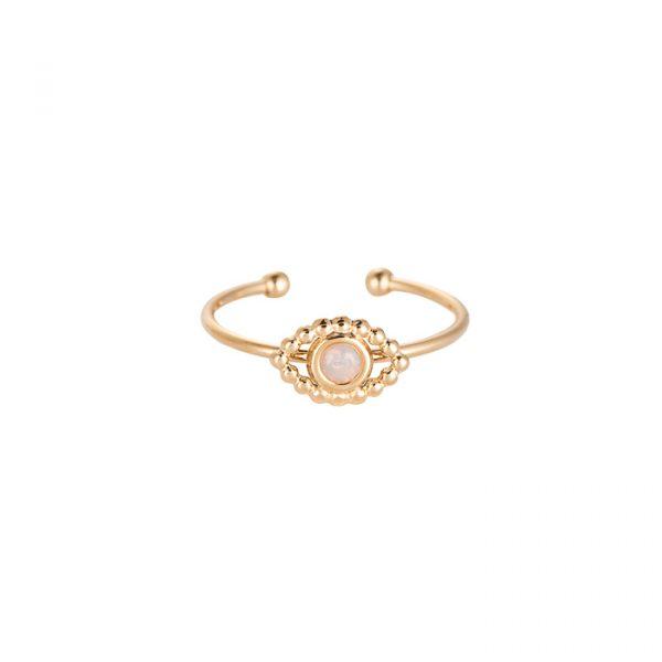 Golden Eye 6.0 Edelstahl Ring Gold Alles Interior Boho Scandi Look anitimadeforyou Concept Store Langenfeld Trockenblumen, Trockenblumen Kränze, Workshops, Schmuck