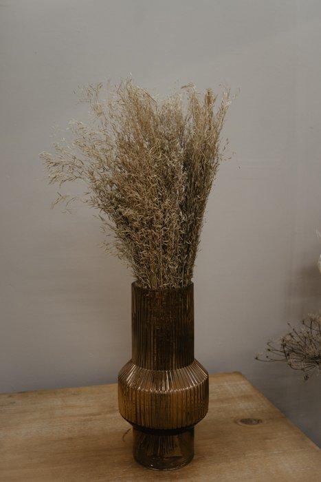 getrocknetes Munni Grass Alles Interior Boho Scandi Look anitimadeforyou Concept Store Langenfeld Trockenblumen, Trockenblumen Kränze, Workshops, Schmuck