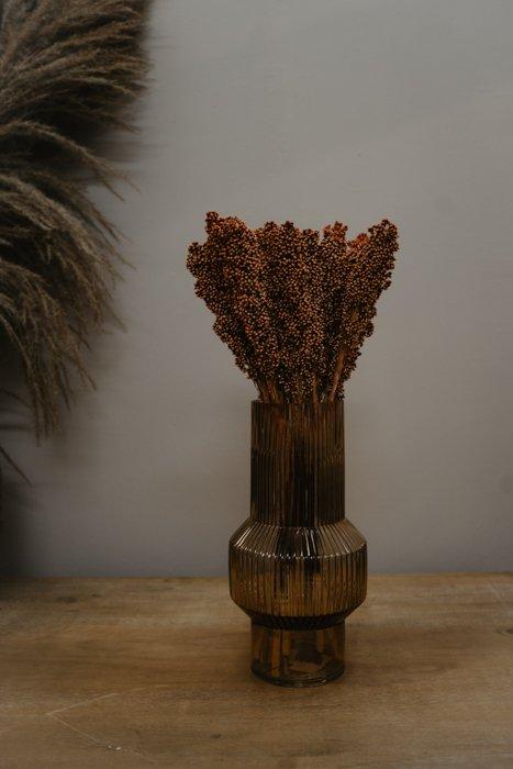 getrocknetes Indian Cornus 1 Bund Alles Interior Boho Scandi Look anitimadeforyou Concept Store Langenfeld Trockenblumen, Trockenblumen Kränze, Workshops, Schmuck