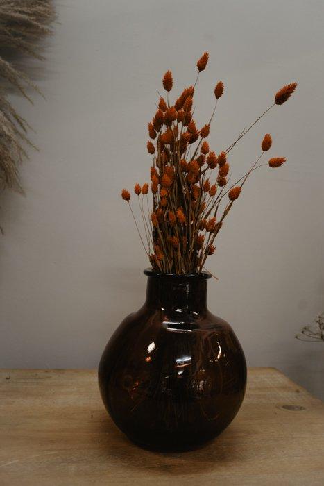 getrockneter Phalaris orange rot Alles Interior Boho Scandi Look anitimadeforyou Concept Store Langenfeld Trockenblumen, Trockenblumen Kränze, Workshops, Schmuck