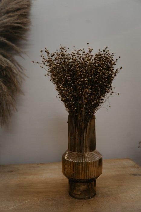 getrockneter Lino Flachs Alles Interior Boho Scandi Look anitimadeforyou Concept Store Langenfeld Trockenblumen, Trockenblumen Kränze, Workshops, Schmuck