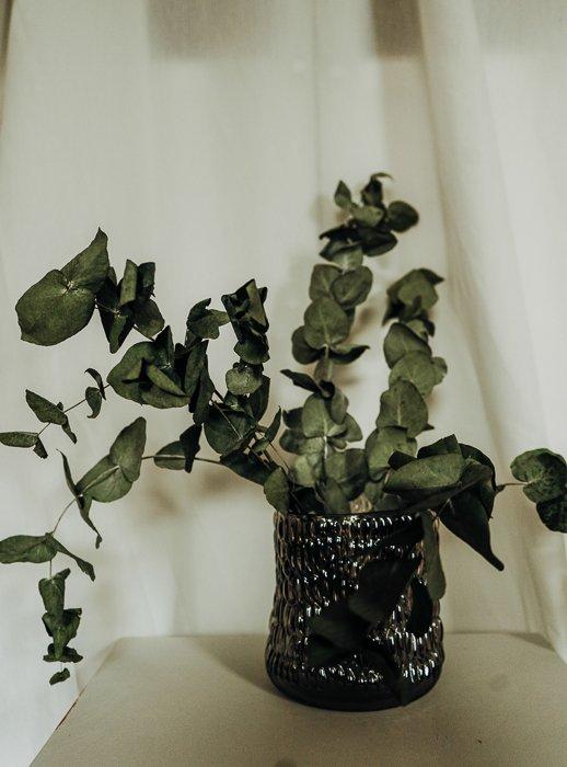 Vase Glas Bubbles Vasen und Pflanzentöpfe Interior Boho Scandi Look anitimadeforyou Concept Store Langenfeld Trockenblumen, Trockenblumen Kränze, Workshops, Schmuck