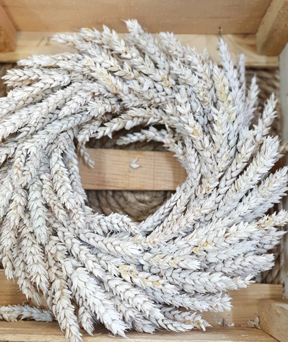 Getreidekranz aus Weizen Weiß 30cm Alles Interior Boho Scandi Look anitimadeforyou Concept Store Langenfeld Trockenblumen, Trockenblumen Kränze, Workshops, Schmuck