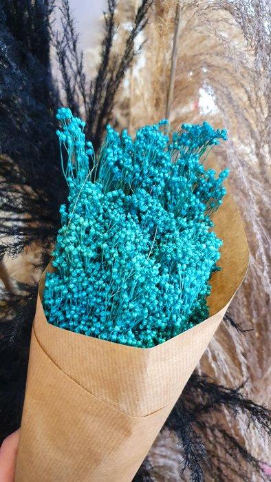 getrockneter Broom Bloom blau türkis Alles Interior Boho Scandi Look anitimadeforyou Concept Store Langenfeld Trockenblumen, Trockenblumen Kränze, Workshops, Schmuck