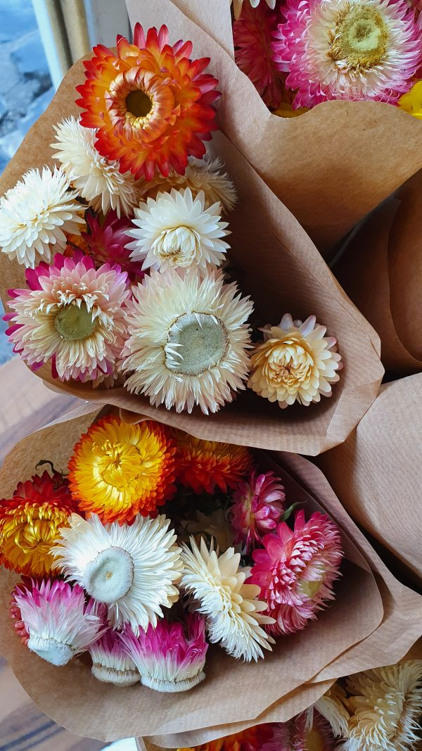Helichrysum Strauss getrocknet – Strohblume Alles Interior Boho Scandi Look anitimadeforyou Concept Store Langenfeld Trockenblumen, Trockenblumen Kränze, Workshops, Schmuck