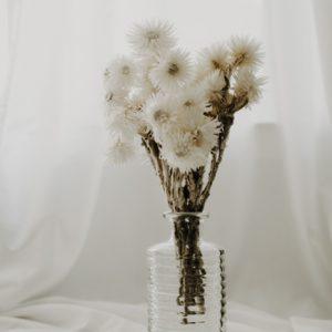 Glas Vase geriffelt Alles Interior Boho Scandi Look anitimadeforyou Concept Store Langenfeld Trockenblumen, Trockenblumen Kränze, Workshops, Schmuck