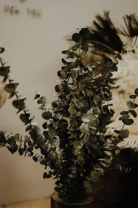 konservierter Eukalyptus Alles Interior Boho Scandi Look anitimadeforyou Concept Store Langenfeld Trockenblumen, Trockenblumen Kränze, Workshops, Schmuck