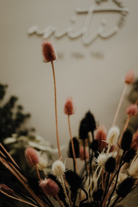 getrocknete Karde Distel 1 Kopf, verschiedene Farben Alles Interior Boho Scandi Look anitimadeforyou Concept Store Langenfeld Trockenblumen, Trockenblumen Kränze, Workshops, Schmuck