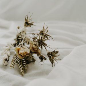 Trockenblumen Strauss Midi Beige Alles Interior Boho Scandi Look anitimadeforyou Concept Store Langenfeld Trockenblumen, Trockenblumen Kränze, Workshops, Schmuck