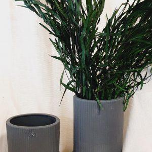 konservierter Eukalyptus grün langblättrig Alles Interior Boho Scandi Look anitimadeforyou Concept Store Langenfeld Trockenblumen, Trockenblumen Kränze, Workshops, Schmuck