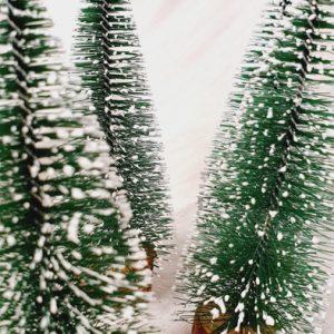 Tannenbaum Mini Grün Schnee Alles Interior Boho Scandi Look anitimadeforyou Concept Store Langenfeld Trockenblumen, Trockenblumen Kränze, Workshops, Schmuck